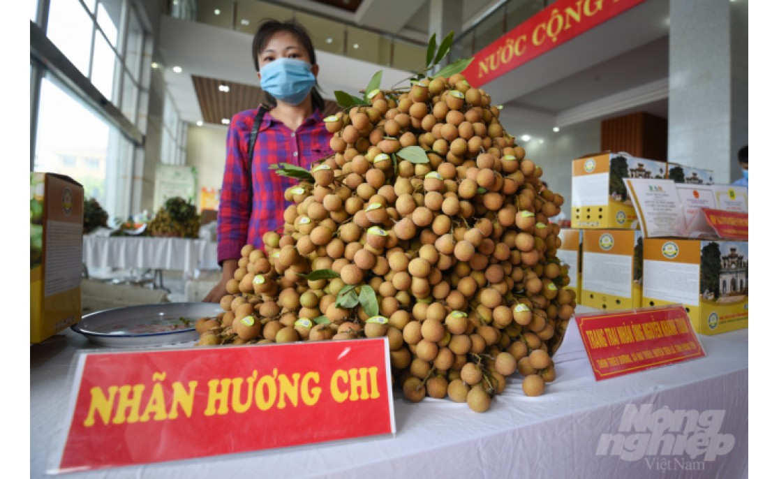 Many Longan areas are qualified for exports to China, USA, Australia...